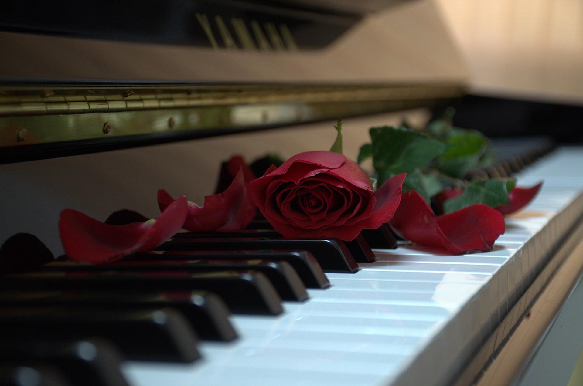 千葉ピアノ教室のホームページ